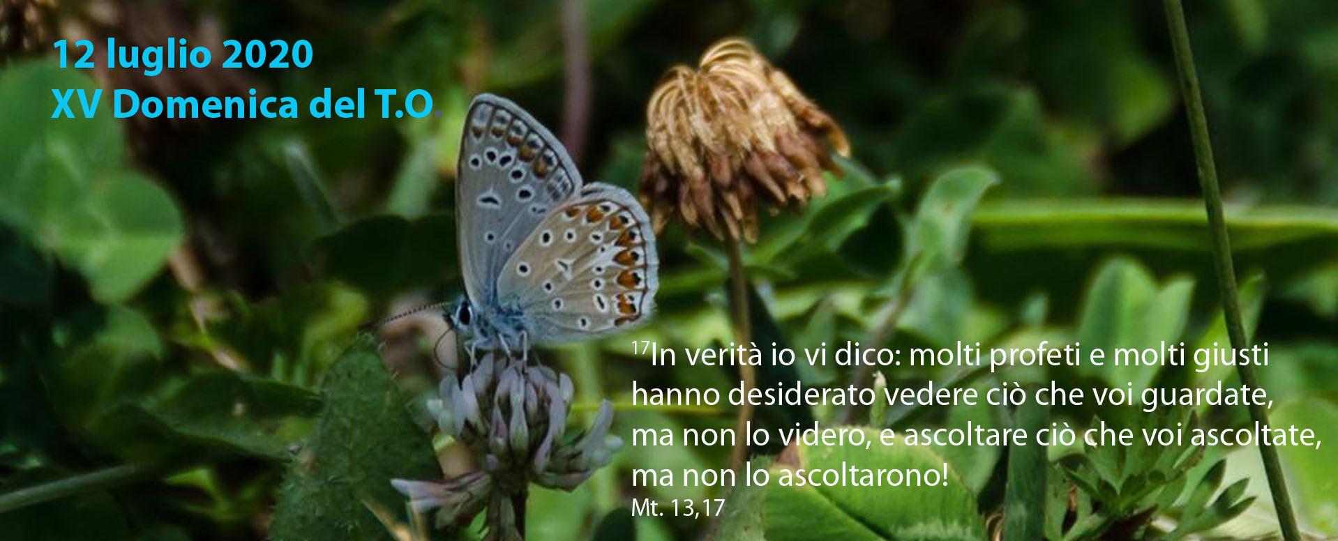 www.sangiuseppeformia.it